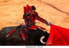 Risultati immagini per el fandi corrida goyesca