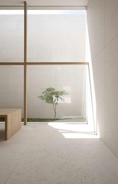 Minimalist window looks out onto small patch of greenery. Bianco + Gotti architetti, Luca Santiago Mora.