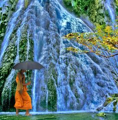 If you're in Mr. Rist's World Religions class...you know. Buddhist monks with umbrellas are the best.