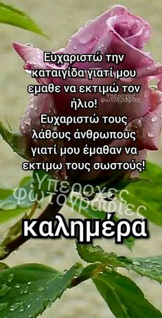 Greek Beauty, Greek Quotes, Greek Recipes, True Words, Good Morning, Wish, Inspiration, Gem, Buen Dia