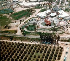 Disneyland and orange groves, 1955 Farmland vs. Old Anaheim trees on the outskirts of Fantasyland. Those tall eucalyptus trees, that the cars are parked under, are still alive and well today years later. Disneyland History, Disneyland World, Disneyland California, Vintage Disneyland, Disneyland Resort, Disneyland Times, Southern California, Anaheim California, Walt Disney