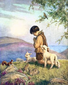 shepherd boy and sheep