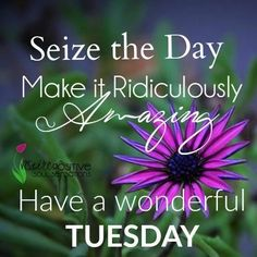 Have a Terrific Tuesday Sweet Sister!! Tons of Love!!
