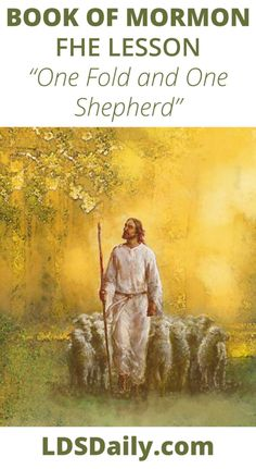 Book of Mormon FHE Lesson - One Fold and One Shepherd   LDS Daily Fhe Lessons, Pictures Of Jesus Christ, Todays Reading, Judging Others, The Good Shepherd, Book Of Mormon, Finding Peace, Read Aloud, Far Away