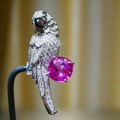 Cartier @cartier  necklace  Photo by @dieco55 #CartierRoyal #Cartier #diamonds  #opal #party #Jewellery  #instamood  #beautiful #instafollow #dream #love #loveyou #inspiration #HighJewelry #friends #finejewellery #lucky #happy #wish #instagood #cute #followme #beauty #follow #highjewellery