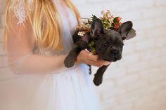 Planificarea unei nunti pe cont propriu poate parea o sarcina usoara pana in momentul in care totul este pus pe hartie. Mai mult de atat, discutiile cu furnizorii par sa nasca si mai multe dileme pentru viitorii miri.  Am intrebat unii dintre cei mai buni floristi din Romania ce aspecte ar trebui sa ia in considerare si sa cunoasca mirii despre decor si nunta inainte sa discute cu floristul lor favorit iar raspunsurile acestora le veti gasi in continuare. Wedding Vendors, Wedding Blog, Wedding Inspiration, Floral, Flowers, Flower