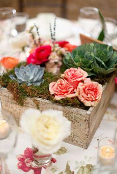 A Wooden Box with Moss and Cabbage. The centerpieces at this rustic Rocky Mountain wedding featured roses, succulents, ornamental cabbage, and ranunculuses arranged in wooden boxes filled with moss. See more photos from this Colorado wedding. Succulent Centerpieces, Wedding Centerpieces, Wedding Table, Rustic Wedding, Our Wedding, Wedding Decorations, Wedding Ideas, Wedding Inspiration, Rustic Centerpieces