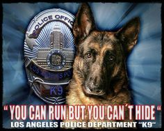 And yes, they show joy even as they go into danger for us. God bless Police K9's and Military War Dogs who save lives every day...often by giving their own.