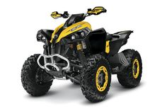 Can-Am Renegade 800 X xc