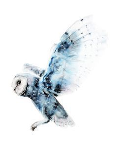 Resultado de imagen para owl watercolor tattoo