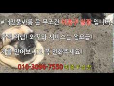 대전풀싸롱 010 3096 7550 이중구실장 24
