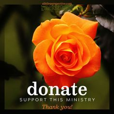 donate to support this ministry | alittleperspective.com