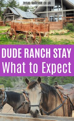Thinking of a staying at a dude ranch in USA? Find out what to expect from this unique and immersive experience. I promise you will be convinced Family Vacation Destinations, Travel Destinations, Family Vacations, Travel With Kids, Family Travel, Mexico Vacation, Cruise Vacation, Disney Cruise, Dude Ranch Vacations