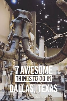 7 Awesome Things to Do in Dallas, Texas Visit the Perot Museum of Nature and Science With rotating special exhibits, fossils from all over Texas and the world, and plenty of hands-on activities for children and adults alike you can easily lose half you Texas Roadtrip, Texas Travel, Travel Usa, Dallas, West Texas, Austin Texas, Dallas Activities, Dallas Things To Do, Scouts
