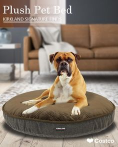 Your Pet Will Sleep Soundly In This Kirkland Signature Luxury Pet Bed The Plush Sleeping Surface Provides Warmth Com Pet Bed Plush Pet Bed Dog Bed Cushion