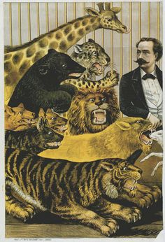old lithograph circus animals