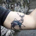 Galaxy stag piece by Resul Odabas