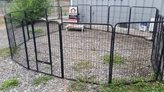 A lot less money then building a fence---3 different sizes of metal pens---enclose a pond, flower bed, confine a dog, rabbits, ducks, almost any animal   put it around your rv to keep your pets safe so many uses you won't believe it   it can be put straight across your property as a fence  we pay the tax located 3508 224th st east 98387   call <br>  show contact info <br>  pictures say it all    fence in a pond as shown fencing material dog pen animal pen fence for any use     <br…