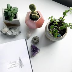 Succulents and crystals to makeup for a household with no Christmas Tree. Happy Holidays to you and yours! Is anyone elses agenda going to be free of plans the next few days? I know mine will be! Merry Christmas everyone! Pilot Pens, Merry Christmas Everyone, Happy Holidays, Succulents, Household, Christmas Tree, Crystals, Bujo, Makeup