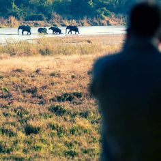 CH Zambia: Bushcamp Safari - In July 2012 we took 24 readers on an adventure of a lifetime