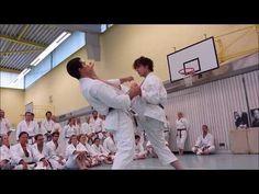 KARATE : 4'DAN KATA & BUNKAI - YouTube Karate Kata, Karate Shotokan, Karate Club, Karate Dojo, Hapkido, Difficult To Cure, Goju Ryu, Self Defense Martial Arts, Friend Cartoon