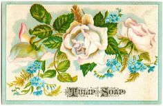 Free Digital Images: Vintage Floral Soap Cards | Just Something I Made