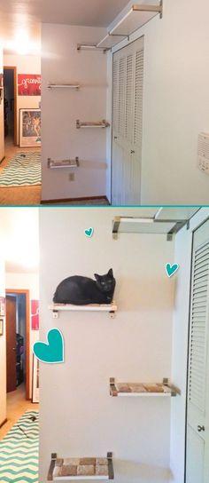 aus ikea regal kallax einen kletterbaum f r die katze gebastelt katze pinterest katzen. Black Bedroom Furniture Sets. Home Design Ideas