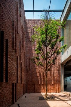 26 Ideas De Fachadas Fachadas Arquitectura Disenos De Unas