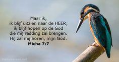 Micha 7:7 - dailyverses.net