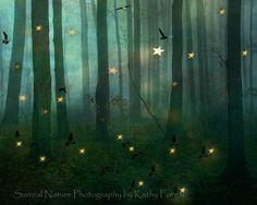 "Nature Photography - Dreamy Fantasy Surreal Woodlands, Stars Birds Green Trees, Haunting, Surreal Nature Photo 8"" x 10"". $28.00, via Etsy."