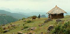 """Äthiopisches Filmdrama """"Lamb"""" --- Spielfilme aus Afrika genießen verhältnismäßig selten internationale Beachtung. Anders beim berührenden Drama """"Lamb"""" (""""Ephraim und das Lamm""""): Regisseur Yared Zeleke erzählt die zum Teil autobiografische Geschichte eines neunjährigen Buben aus Äthiopien und konnte auch bei den Filmfestspielen Cannes überzeugen."""