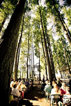 Kitsap Memorial State Park This Is Our Venue Possible