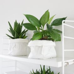 Vihreä on IN! Indoor Plant Pots, Potted Plants, Interior Decorating, Interior Design, Interior Plants, Plant Wall, White Decor, Little Gifts, Houseplants