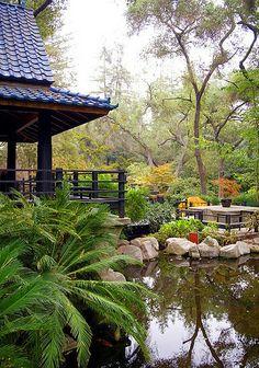 Giardino giapponese, Japan, japana ĝardeno, Japanese Garden, japanischen Garten, jardin japonais, Tokyo,  Японский сад