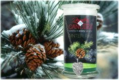 Capture the magic of Christmas all season long with this delightful pine aroma. Subtle wood tones support classic spruce notes for a fragrance that is smooth yet strong. Winter Pine CandleInfused with natural essential oils, including Patchouli, Cedarwood, Fir Needle and Spearmint.Full size 21oz scented candle100% all natural Soy candle Burns for 100 to 150 hours. Includes a piece of jewelry in every candle.