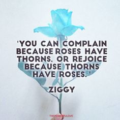 Ziggy  'You can complain becauseroses have thorns or rejoice because thorns have roses.#quotesoftheday #quotes #quote  #tbt #l4l #instagood #instagram #water #love #positive #positivevibes #positivethinking #heart #roses #best #motivasi #motivationalquotes #motivation #inspiration #inspiring #inspirasi #inspirationalquotes  #bestoftheday #photooftheday  #pinterest #IFTTT # #IFTTT