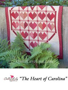 """""""The Heart of Carolina"""" - this beautiful quilt features simple paper piecing and clever sashing to pay tribute to the heart of North Carolina, the Piedmont! A 2017 Quilt! Carolina pattern."""