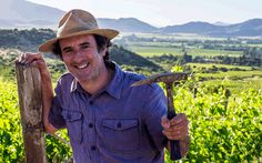 Torrontés  | Wine Varietals | Gold Medal Wine Club