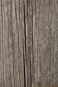 Royalty free stock photo of old and dry wood texture