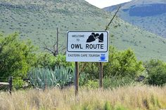 Provinces Of South Africa, Cape, Tourism, Owl, African, Explore, Mountains, Travel, Beautiful