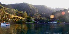 Orama, Great Barrier Island