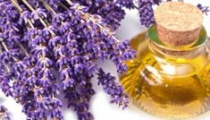 How to make homemade lavender oil. Lavender oil is one of the most used both in medicine and in cosmetics and perfumery for its multiple properties. Lavender oil can be used to treat. Home Remedies For Hair, Hair Loss Remedies, Natural Home Remedies, Herbal Remedies, Essential Oils For Fever, Essential Oil For Hemorrhoids, Lavender Benefits, Esential Oils, Best Oils