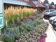 Perennial Flower Beds With Grass Flower Bed Layouts