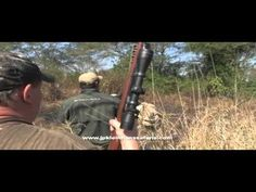 Cape Buffalo Charges Hunters [VIDEO] - http://www.sportsoutdoor.org/hunting/watch-cape-buffalo-charges-hunters-video/