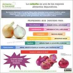 La #cebolla, uno de los mejores #alimentos depurativos y con un montón de propiedades más #infografia
