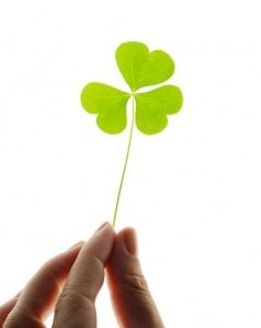 Your business plan, systems and knowledge may not be the only thing creating your online business success. It might be you are lucky. Do you agree?  http://learnit2earnitwithlynn.com/internet-marketing/online-basic-tips/online-business-success-are-you-just-lucky