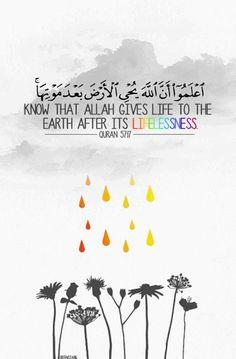 Quran#verse#islam