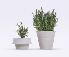 L'uso di silicone flessibile permette al portavasi Fold Pot di Emanuele Pizzolorusso, di tener conto delle modifiche della pianta e, in un certo senso, crescere insieme ad essa.