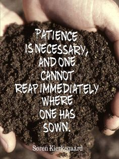 Patience is necessary. Kierkegaard Quotes, Soren Kierkegaard, Love Me Quotes, Best Quotes, Awesome Quotes, Famous Philosophy Quotes, Famous Quotes, Patience Quotes, Word Of The Day