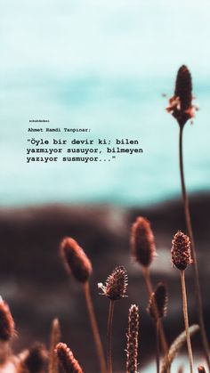 Inspirational Quotes About Success, Success Quotes, Learn Turkish Language, Different Points Of View, Anime Muslim, Good Sentences, Quotes For Book Lovers, Cover Photo Quotes, Story Instagram